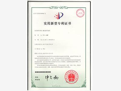泰盛-抛丸器用电机专利证书
